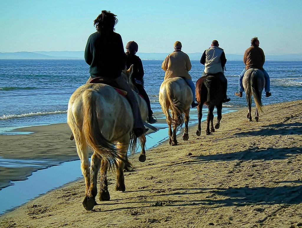 """Défi Post Traitement XVIII : """"Promenade sur la plage"""" 5479365382_46c8e0550d_b"""