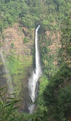 Tad Fane Waterfall (Tom_Martin2010) Tags: river waterfall asia southeastasia plateau drop basin erosion jungle geography tad laos cascade indochina fane pakse southernlaos bolaven tadfane bolavenplateau tadfanewaterfall