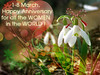 For all the women in the world (Alin B.) Tags: flower nature march spring women sister anniversary mother wife snowdrops martisor ghiocei 1martie 8martie ziuafemeii alinb