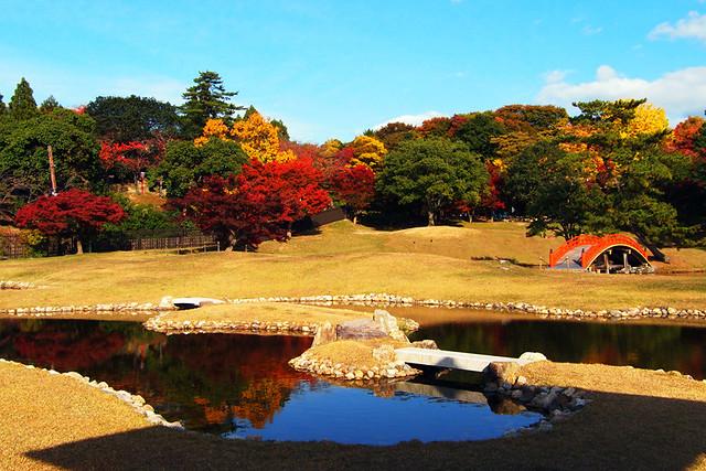 20101116_141659_旧大乗寺庭園