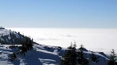 ködbe borult / smothered in fog (debreczeniemoke) Tags: winter mist mountain fog view hiking top hegy transylvania transilvania height köd gutin erdély tél túra kilátás magaslat csúcs kakastaréj canonpowershotsx20is creastacocoşului smotheredinfog ködbeborult