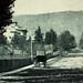 Montréal 1860. Rue de la Montagne >Nord.