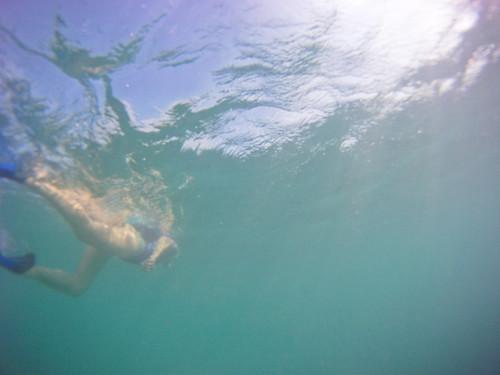 Jamaica Vacation, Negril, Treasure Beach, Montego Bay Feb 4 to 11 2011           -8