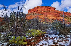 Sedona Winter (D'ArcyG) Tags: winter red arizona snow mountains southwest landscape rocks sedona redrock