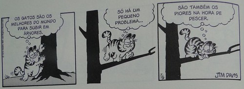 """Garfield escalando"""