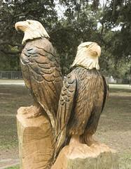 Eagle Sculpture (Yakin669) Tags: wood sculpture cemetery florida carving american leesburg eagles lakecounty symbolism loneoak keithcarroll yakin669