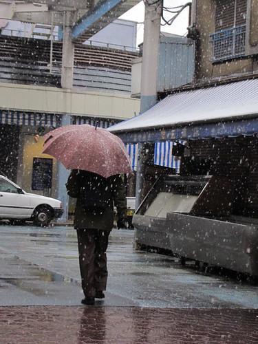 急に雪に変わったな