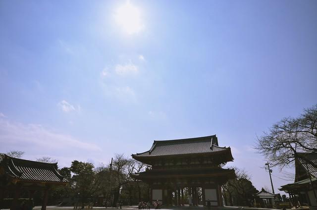 春空、寺院に遊ぶ。