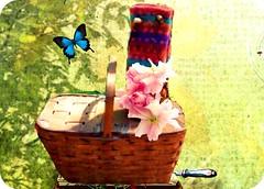 pink-saturday-picnic-bicycle