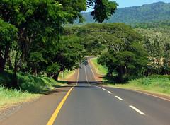 road to Ngorongoro (mountainbogy) Tags: road tanzania safari ngorongoro