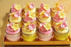 Pink & Yellow Cupcake Set