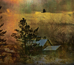 ---the old barn--- (xandram) Tags: winter barn photoshop newengland textures selectbestexcellence sbfmasterpiece sbfgrandmaster
