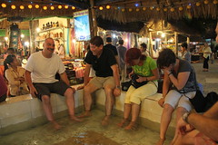 "Fish Massage - Siem Reap <a style=""margin-left:10px; font-size:0.8em;"" href=""http://www.flickr.com/photos/46768627@N07/5535745461/"" target=""_blank"">@flickr</a>"