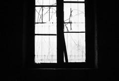 (Blackeyedog) Tags: winter light shadow blackandwhite bw white black abandoned film window analog 35mm canon 50mm ruins decay ombra nowhere finestra 400 135 nothing agfa rodinal inverno 130 legacy bianco luce umbria biancoenero analogica oneshot rudere rovine pellicola niente abbandono umbra r09 autaut legacypro agfar09oneshot freestylearistalegacypro
