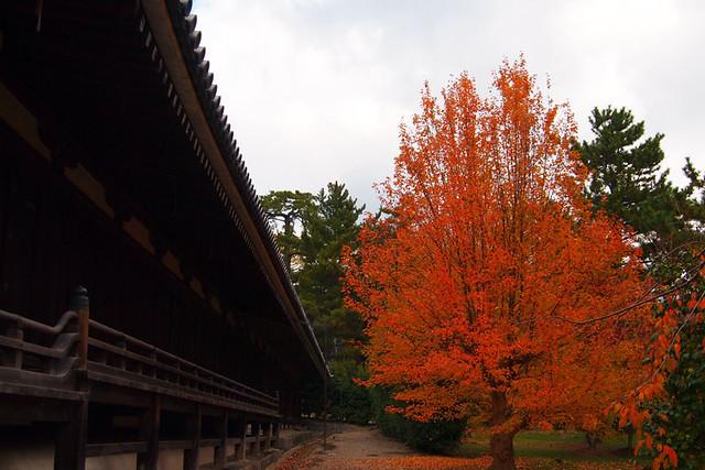 20101118_101111_法隆寺_西室、三経院(国宝)
