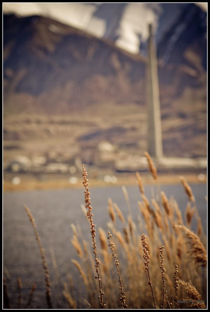 IMAGE: http://farm6.static.flickr.com/5211/5723033957_801d2b7223_b.jpg