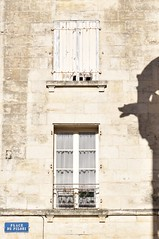 La gargouille veille (bonnaudthomas) Tags: gargouille gargoyle fentres windows ombre shadow niort