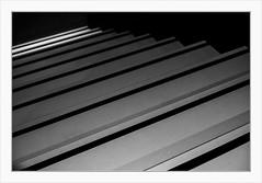 Licht und Schatten auf der Photokina (Meine Art zu sehen) Tags: schwarzweis lichtundschatten