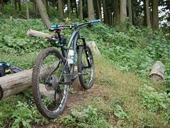 P1030626 (wataru.takei) Tags: mtb lumixg20f17 mountainbike trailride maintenance japan canfieldbrothers epo
