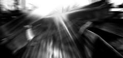 Exhumed Coffins Winter Sun - Waste Dump at the Cemetery - Zentralfriedhof Wien Simmering, Mlldeponie Evangelischer Friedhof (hedbavny) Tags: vienna wien autumn winter light summer blackandwhite sun abstract art abandoned film analog trash studio austria licht sketch sterreich spring lomo lomography decay sommer kunst diary horizon herbst jahreszeit sketchbook september note lensflare abstraction melancholy coffin schwarzweiss sonne reflexion tagebuch zentralfriedhof exhumed reflektion frhling atelier sarg werkstatt verfall bearbeitung skizze notiz arbeitsraum mlldeponie skizzenbuch wastedump evangelischerfriedhof horizoncompact exhumiert hedbavny ingridhedbavny