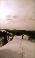 Chestnut Ridge Photo