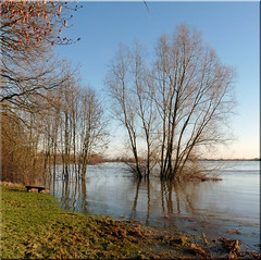 High water. The river Rhine near Rhenen. (Cajaflez) Tags: holland river utrecht thenetherlands rhine highwater rhenen rivier hoogwater topshots photosandcalendar natureselegantshots 100commentgroup saariysqualitypictures greatshotss theoriginalgoldseal flickrsportal panoramapotogrfico worldwidelandscpaes denederrijn