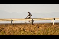 Sguardo all'orizzonte (DISAMISTADE_my life is a reportage!) Tags: bici cyclette mezzoditrasporto