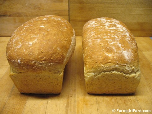 Same amount of bread dough in two different sizes of loaf pans