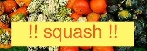 february will be squash month over at the blog