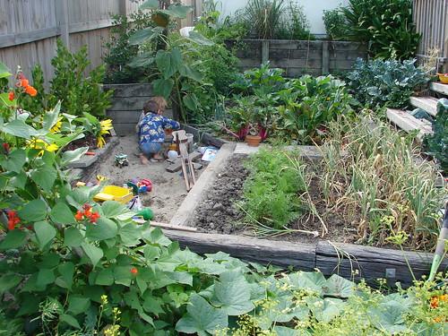 January garden