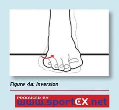 Inversion (sportEX journals) Tags: medicine rehabilitation ankleinjury sportsmedicine sportex sportexmedicine anklejoint