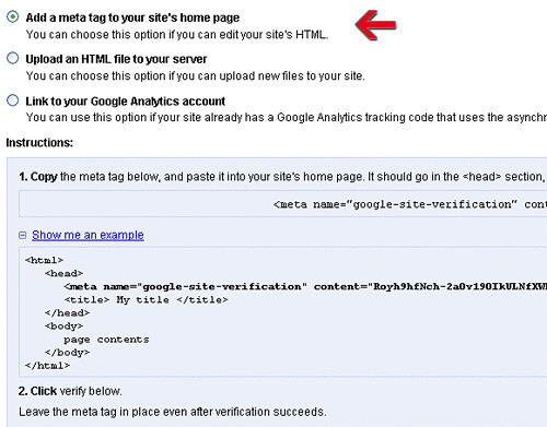 Troubleshooting - Select 'Add a meta tag to your site's home page' as this is the easiest - blankpixels.com