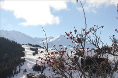 IMG_3684_GF (LAIOS69) Tags: nature montagne hiver silence neige blanc feu hauteur