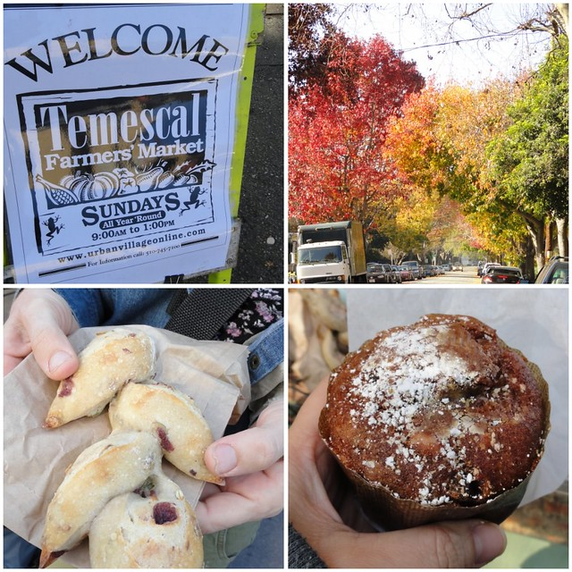 Temescal Collage 3