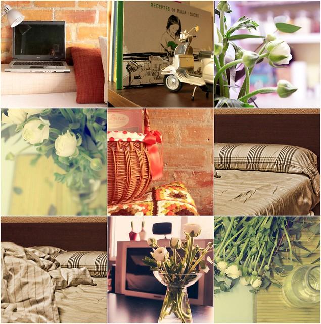 Collage enero 2011{tu espacio}