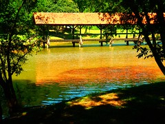 Water Art: Covered terracotta footbridge reflections (peggyhr) Tags: blue trees friends brazil orange sunlight black green yellow reflections river niceshot shadows footbridge terracotta textures pa curitiba coveredbridge soe addictedtoflickr dappledsunshine tinguipark 25faves peggyhr heartawards artistspotlight brilliant~eye~jewels flickridol peaceawards highqualityimages 100commentgroup grouptripod freedomhawk colorphotoawardpremier photographerparadise artofimages angelawards flickraward throughatravsdurch pegasusaward bestpeopleschoice artnetcontemporaryartist mygearandme artwithoutend lomejordemisamigos favtop2049 ringexcellence liteoutstandingartisticphotos nossasvidasnossomundoourlifeourworld level1photographyforrecreation youcallitartwhynot redgroupno1 p1210076p musictomyeyes~level1~ aidarehgroupbienvenidowelcome