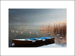 Matin d'hiver au lac (Patrick Grin) Tags: annecy eau grin roseaux brume barque lacdannecy matindhiver