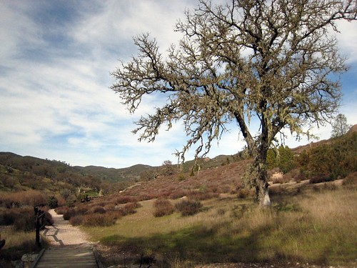 Juniper Canyon Trail  - Pinnacles National Monument