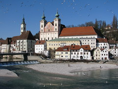 Steyr - Upper Austria (Been Around) Tags: bird birds river austria sterreich europa europe niceshot travellers eu february vgel sr obersterreich autriche februar austrian aut steyr o  upperaustria schotter 2011 steyrdorf flus 5photosaday michaelerkirche a onlyyourbestshots brgerspital hauteautriche concordians thisphotorocks zwischenbrcken ortskai ennsdorf visipix expressyourselfaward flickrunitedaward bauimage diesteyr dieenns schotterbank