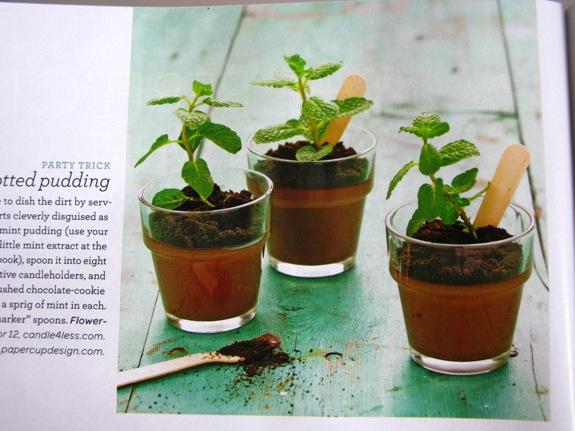 martha stewart gardening 004