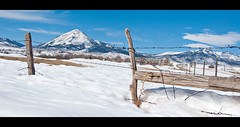 HFF: {Snowy Peaks & Rustic Fence} Colorado Edition! (pixelmama) Tags: snow mountains fence landscape colorado cows widescreen rustic cortez winterwonderland hwy160 hff 752 project52 focus52 fencefriday thebigfivetwo cinematicstylecropping dontenternomanslandonahalfatankofgas