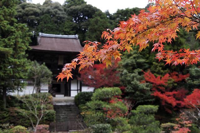 101115_145037_円成寺