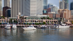Little boats (michael_davies) Tags: sydney darlingharbour sydneyharbour tiltshift canoneos5dmarkii ts45e