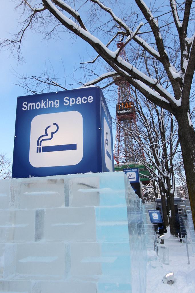Sapporo Snow Festival  (18)