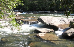 Water in the creek