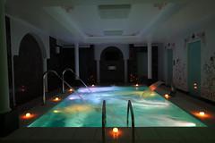 Piscina Wellness: green (Piscine Laghetto) Tags: piscina hammam bagno piscine wellness laghetto doccia turco emozionale benessere