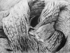 PC3 (claralieu2) Tags: texture drawing freshman crayon risd