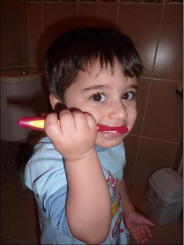 diş fırça