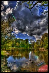 Sun burst pond (Jasumishooter) Tags: pond nikon ducks wideangle tokina sunburst hdr 1116mm d3100