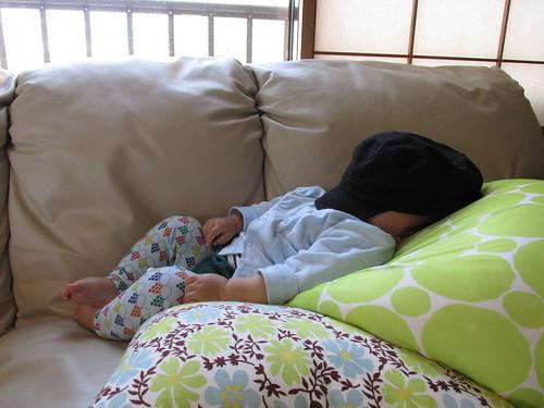 Le plus jeune couchsurfer du monde, Nara, Japon